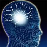 Reverse engineering the brain